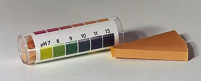 how to make ph strips