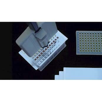 Excel Scientific ThermalSeal Thermal Cycling Film ...