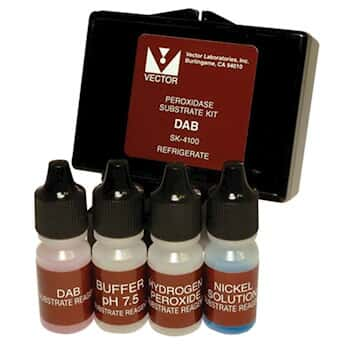 vector laboratories sk 4100 dab substrate kit brown 300 ml from