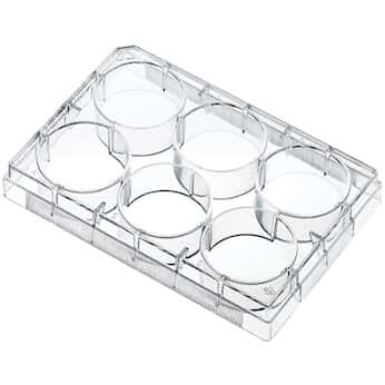 Argos Technologies® Cell and Tissue Culture Plates